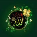 م محمد أشرف حمزة
