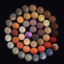 Faisal Qhtani