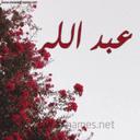 Ali Ebraheem