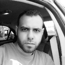 حسام الدين محمد سيد علي