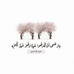 Naif Alanazi