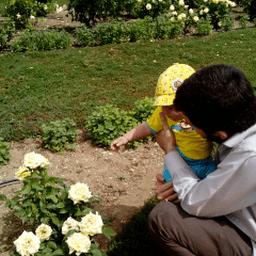 Saleh Alhashim
