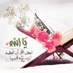 Ahmed Abdelmoaty