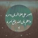 Saleen Almahmoud