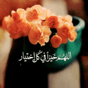 Eng Mahmoud Ezz