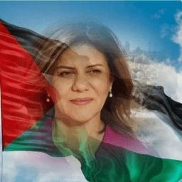 Mohamed Azmy