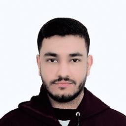 مصطفى هشام