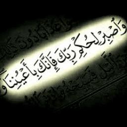 ابراهيم عبد العزيز