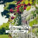 Ibrahim Anis Ibrahim
