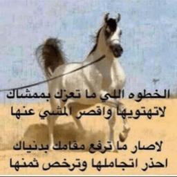 عبدالعزيز الحبيب