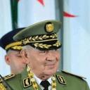 Alqassem Ogx