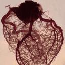 يزيد بن سعود
