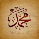 محمد المصري5
