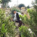 أحمد وافي