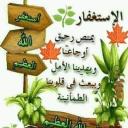 حسنة عبد الغني بشير