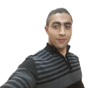 Farghly Ahmed