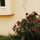 الزهراء عبدالسلام