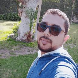 Moustafa A El Moaty