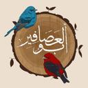 أبو العصافير - عبدالعزيز النسي