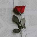 Angel_pen0 - The Writer Adan